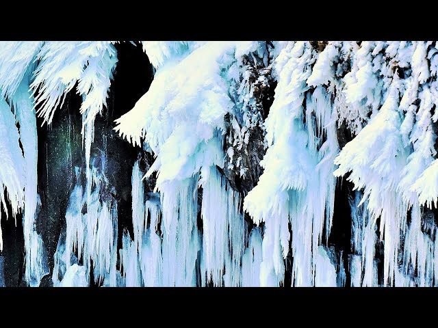 凍りついた「乙女の涙」に出会った 厳冬期の知床