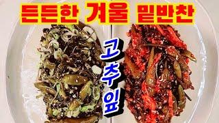 ☆고추잎김치☆삭혀서 무침&김치 최고 밑반찬