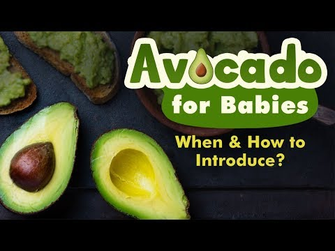 Introducing Avocado to Babies When, Why and How?