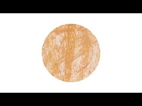 Cicadas - Danielle Fricke