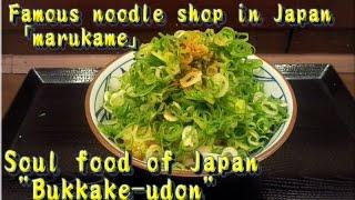 """Soul food of Japan """"Bukkake-udon""""丸亀製麺"""