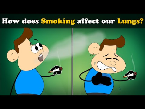 How does Smoking affect our Lungs? | #aumsum #kids #science #education #children