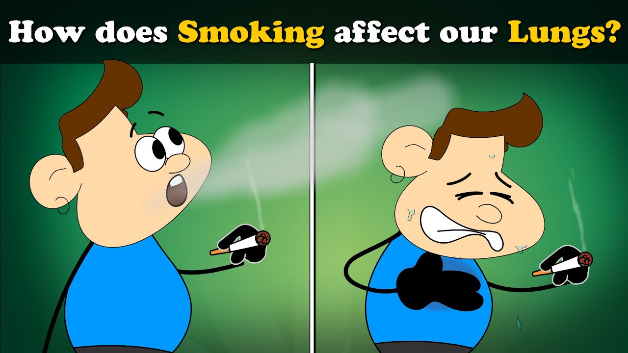How Does Smoking Affect Our Lungs Aumsum Kids Science Education Children Youtube