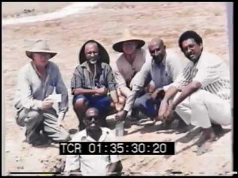 Seawater Farms Eritrea: Beginning - Nov 1998 - July 1999