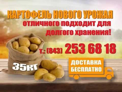 Купить Тирана. Протравитель для Картошки. №1 в Украине! - YouTube