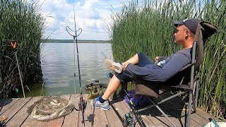 Рыбалка на карася в жару на озере Межура Круглый атакует без перерыва Наловил на три сковородки