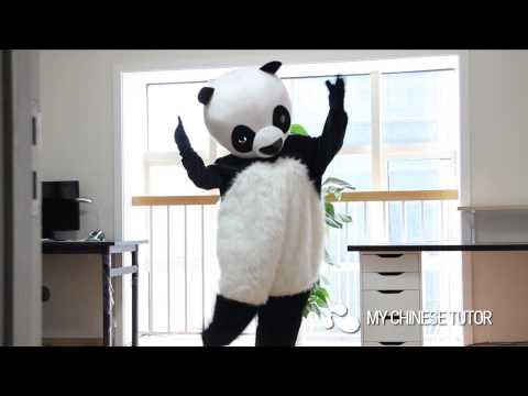 MyChineseTutor --- ni hao, panda