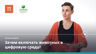 Интернет живого — Оксана Мороз(, 2017-10-30T09:27:03.000Z)