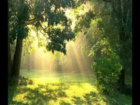 2 волшебных слова , которые меняют  вашу жизнь до неузнаваемости