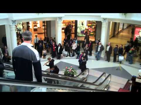 An Orchestra Hit-and-Run at the Fashion Mall