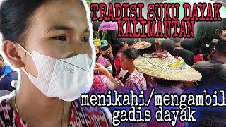 Inilah Tradisi Adat Dayak Meminang Gadis Dayak Kalimantan