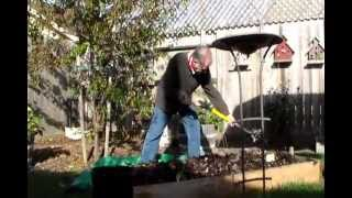 Composting IN my Raised Beds Over the Winter - 11.22.2012