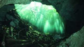 Cenote Mexico Mystic Vision