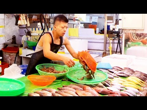 Fish auction - Seafood Market in  Fish Harbor Taiwan