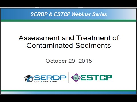 Assessment and Treatment of Contaminated Sediments