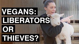 Animal activists: liberators or thieves?