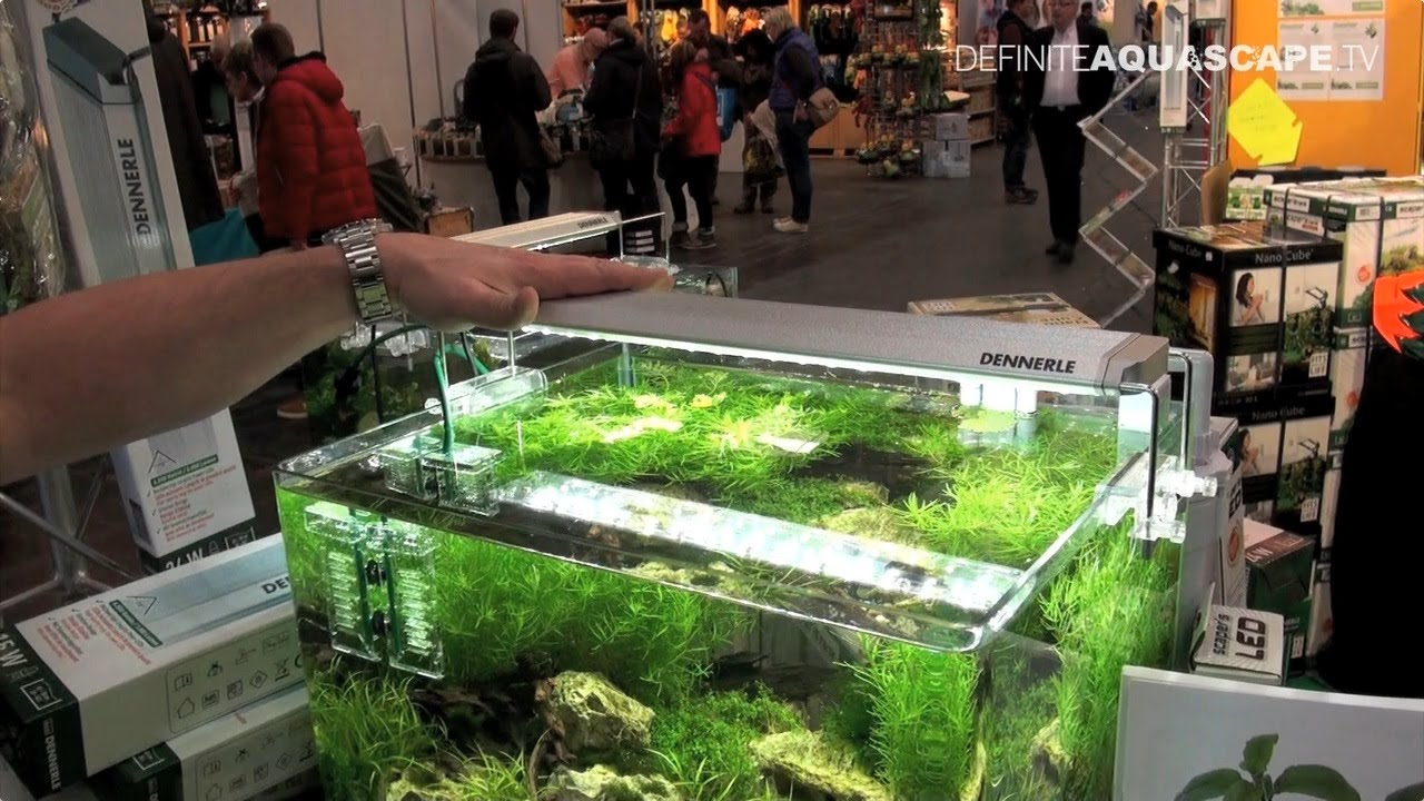 dennerle led lights for aquarium at heimtiermesse 2015 youtube