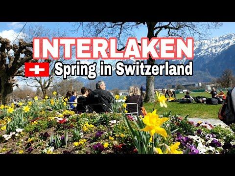 SPRING IN INTERLAKEN SWITZERLAND#swissholiday