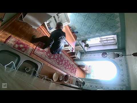 Скрытая камера у мопса дома!