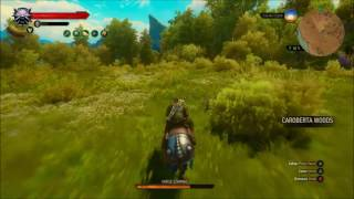 The Witcher 3: Blood and Wine - Igni Build (See description)