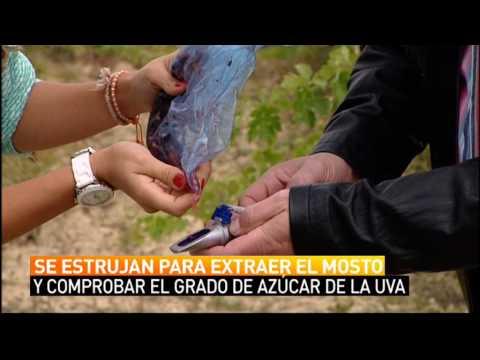 Ruta por Rioja Alavesa