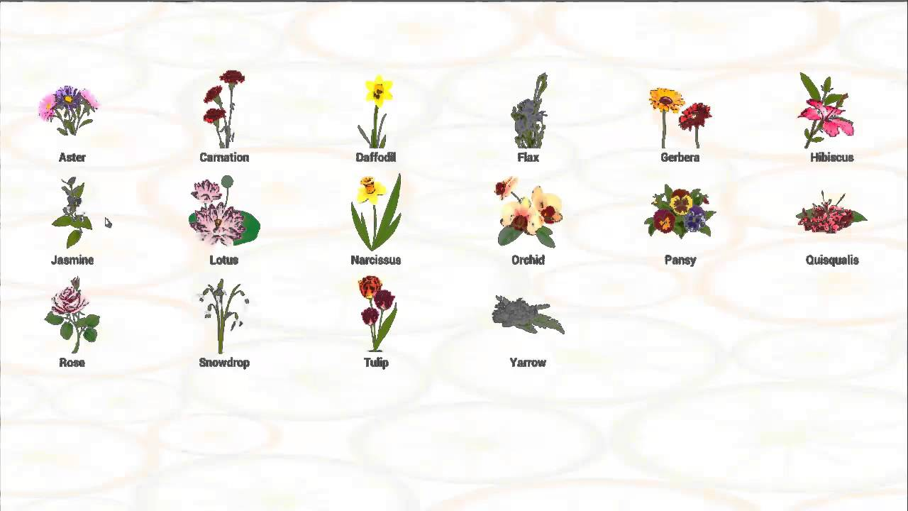 flower names for children, Natural flower