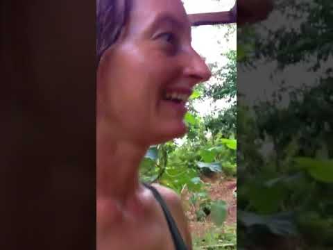 Off-grid homestead in Belize, Central America