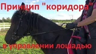 Как повернуть лошадь?