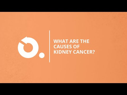 Kidney Cancer Understanding The Causes Onco Com Youtube