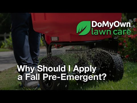 Why Should I Ly Fall Pre Emergent Herbicides Weed Prevention Tips Domyown