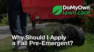 Why Should I Apply Fall Pre Emergent Herbicides?  - Weed Prevention Tips