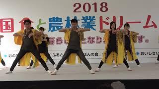 朝霞なるこ人魚姫・朝霞市・朝霞の森会場。#狐.