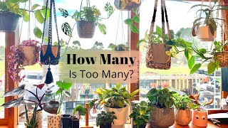 How Many Houseplants Can You Fit In A Tiny House? | Indoor Plant Tour