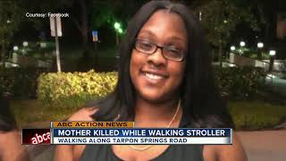 Mother killed while walking along Tarpon Springs Road