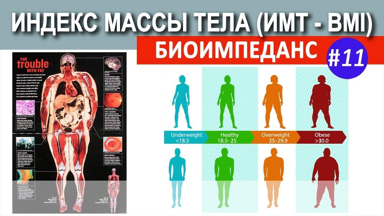 Индекс массы тела 30