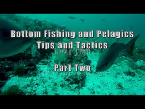 Pt. 2  Complete Guide to Offshore Bottom Fishing Deep Sea wi