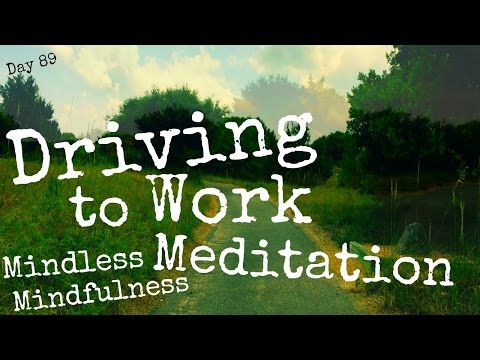 Tracy Lynn - Driving To Work Mediation