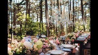 Свадьбы в Крыму! Организация свадьбы в Крыму: Севастополь, Симферополь, Ялта