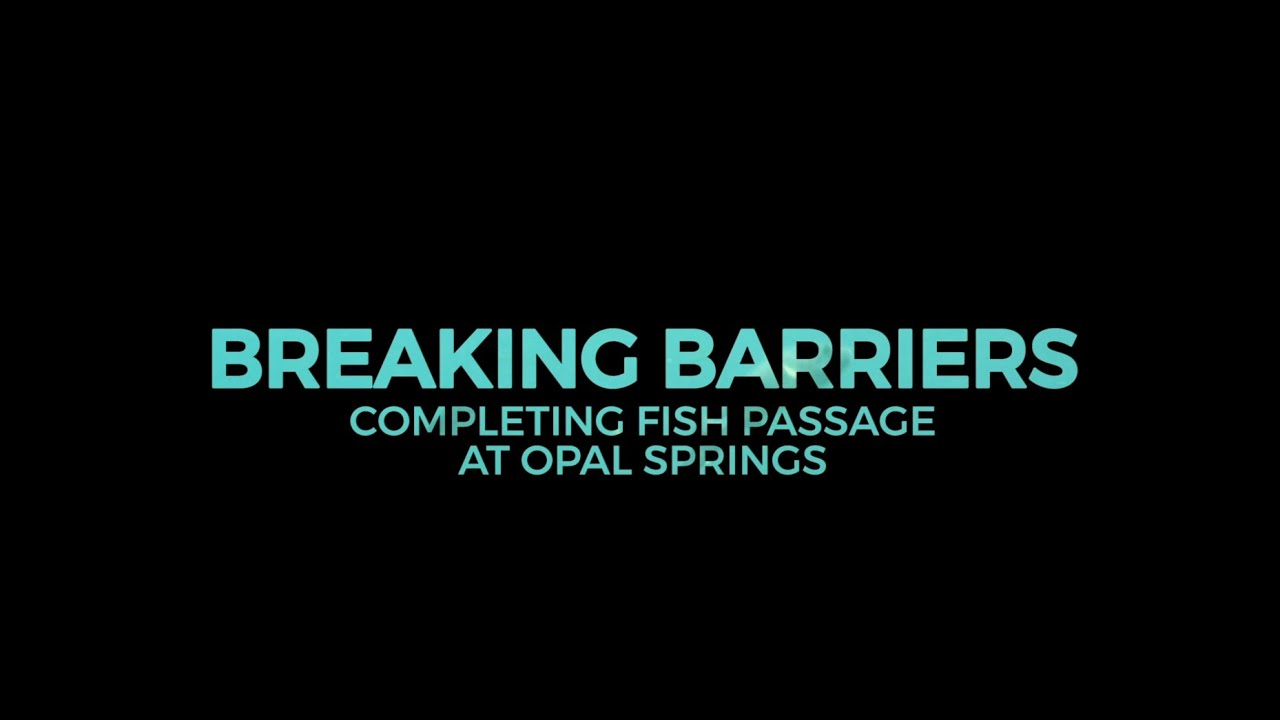 Breaking Barriers (Full Video)
