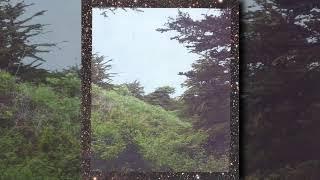 jinsang - journey (1 Hour Homework Edit)