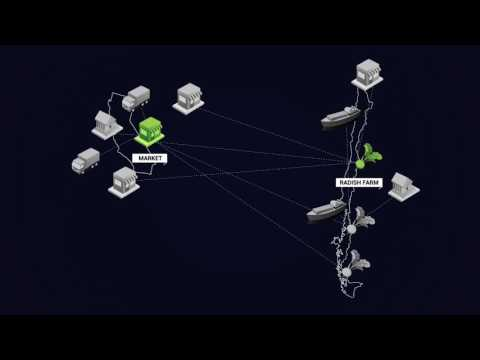Hyperledger Fabric Explainer