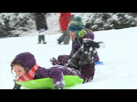 """""""Sled free or die"""" rallying call in snowy Washington"""