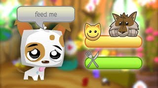 If You Had to Take Care of Your Pets in Animal Jam