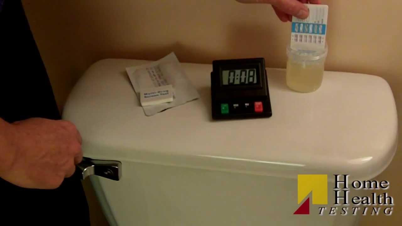 12 Panel Drug Test