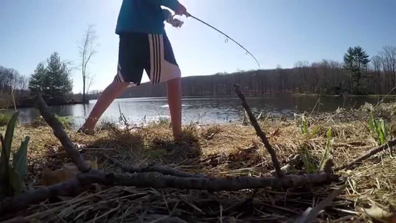 Bed fishing for bass 2015 largemouth bass jigs for Bed fishing for bass