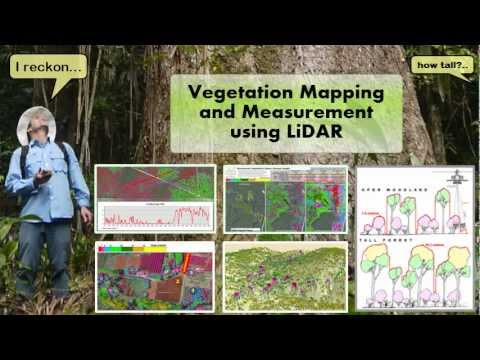 Vegetation Mapping and Measurement using LiDAR