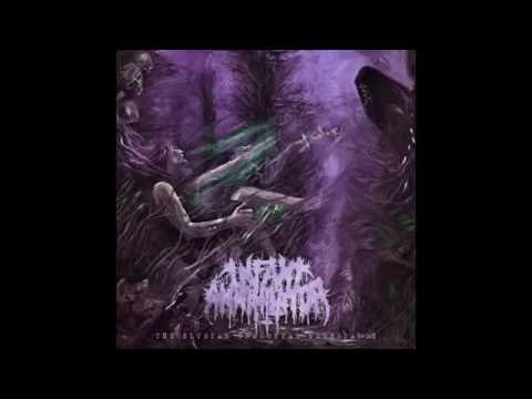 Infant Annihilator  Behold The Kingdom Of The Wretched Undying 2016