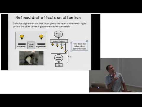 AHS16 - Aaron Blaisdell - Diet and Cognition