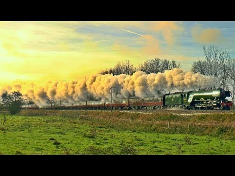 'The Flying Scotsman' 60103 Visits East Anglia on The Cathedrals Express: 11/11/17