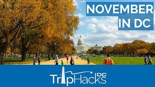 Tips for Visiting Washington DC in November
